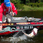 Kelly Jordon: Following Summer Bass